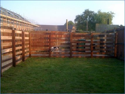 garden with fence