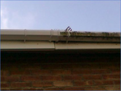 cleaning of guttering before and after