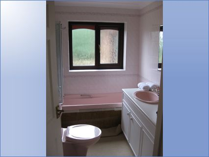 Bathroom before - renovation project - L