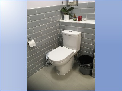 Modern WC with brick effect tiling