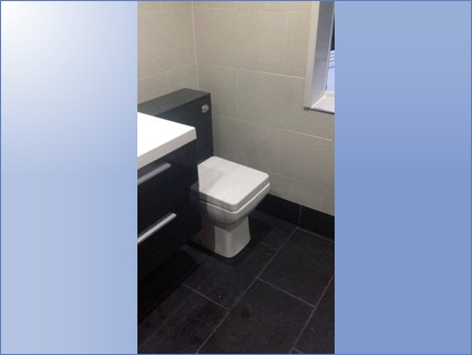 Concealed cistern and back to wall pan